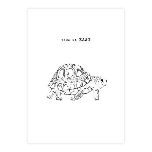 Greeting Card Turtle