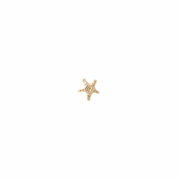 Starfish Sterling Silver Gold-Plated Earring