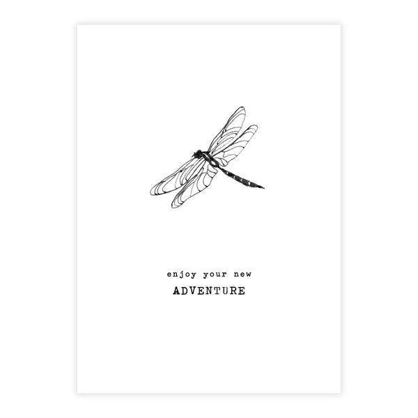 Greeting Card Dragonfly