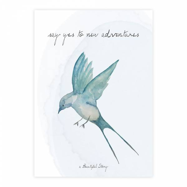Greeting Card Swallow