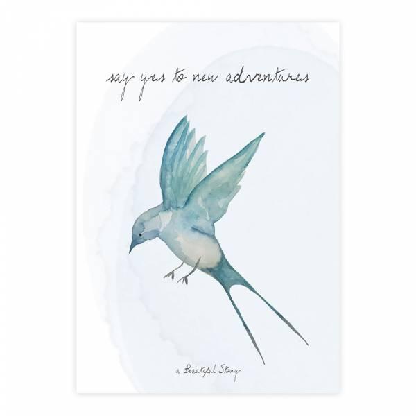 Greeting Card Swallow